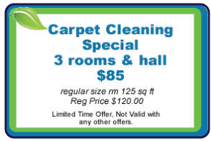 Wilmington-Carpet-Cleaning-Special-1